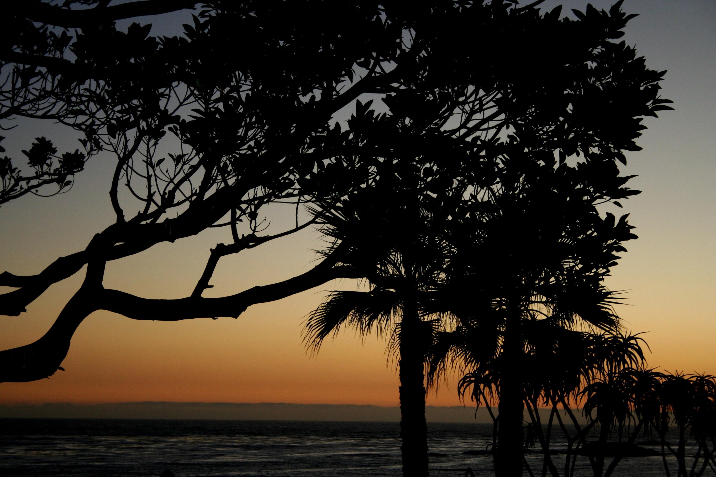 laguna, laguna beach, laguna beach sunset