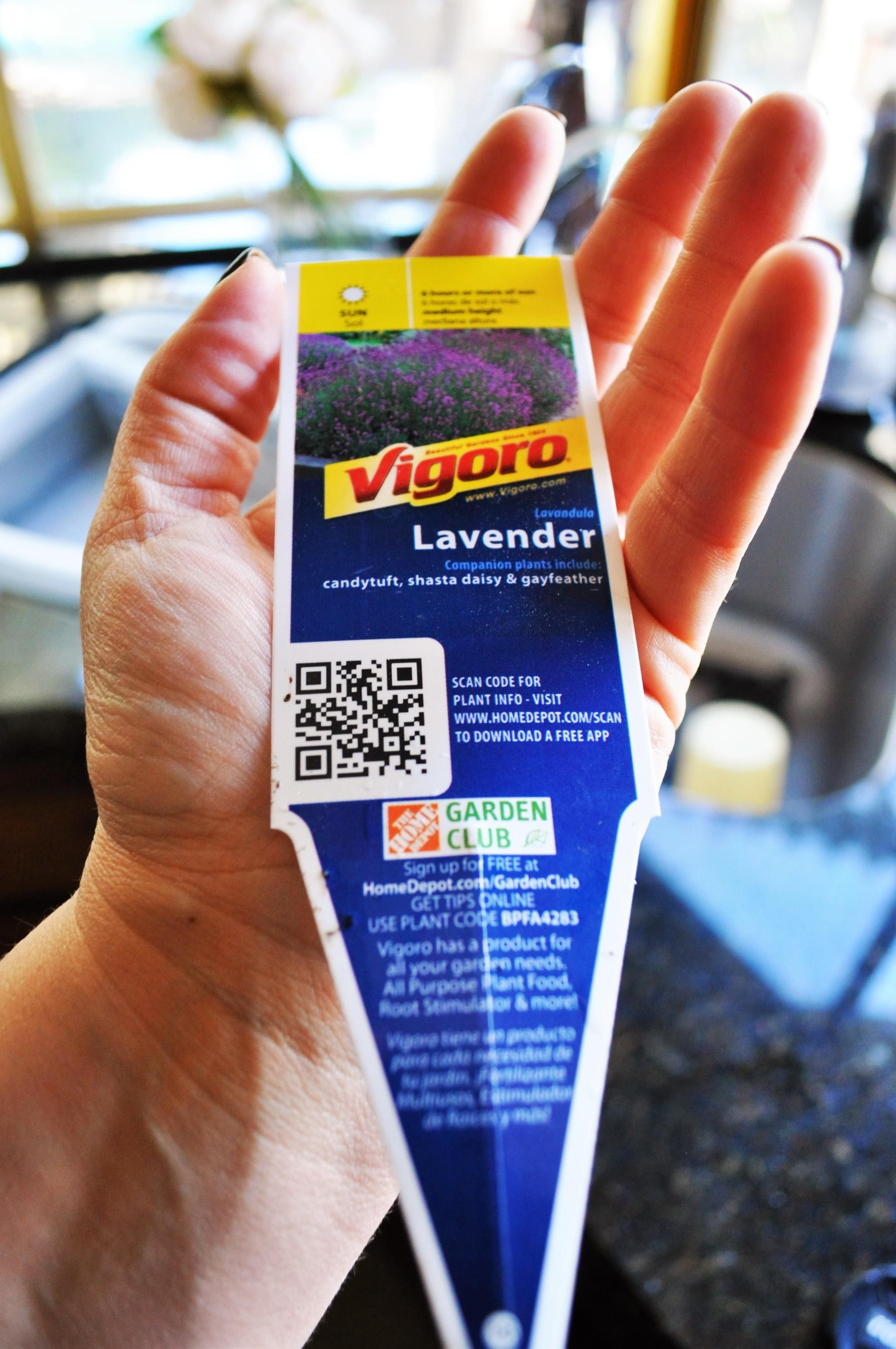 lavender planter tag, home depot lavender tag