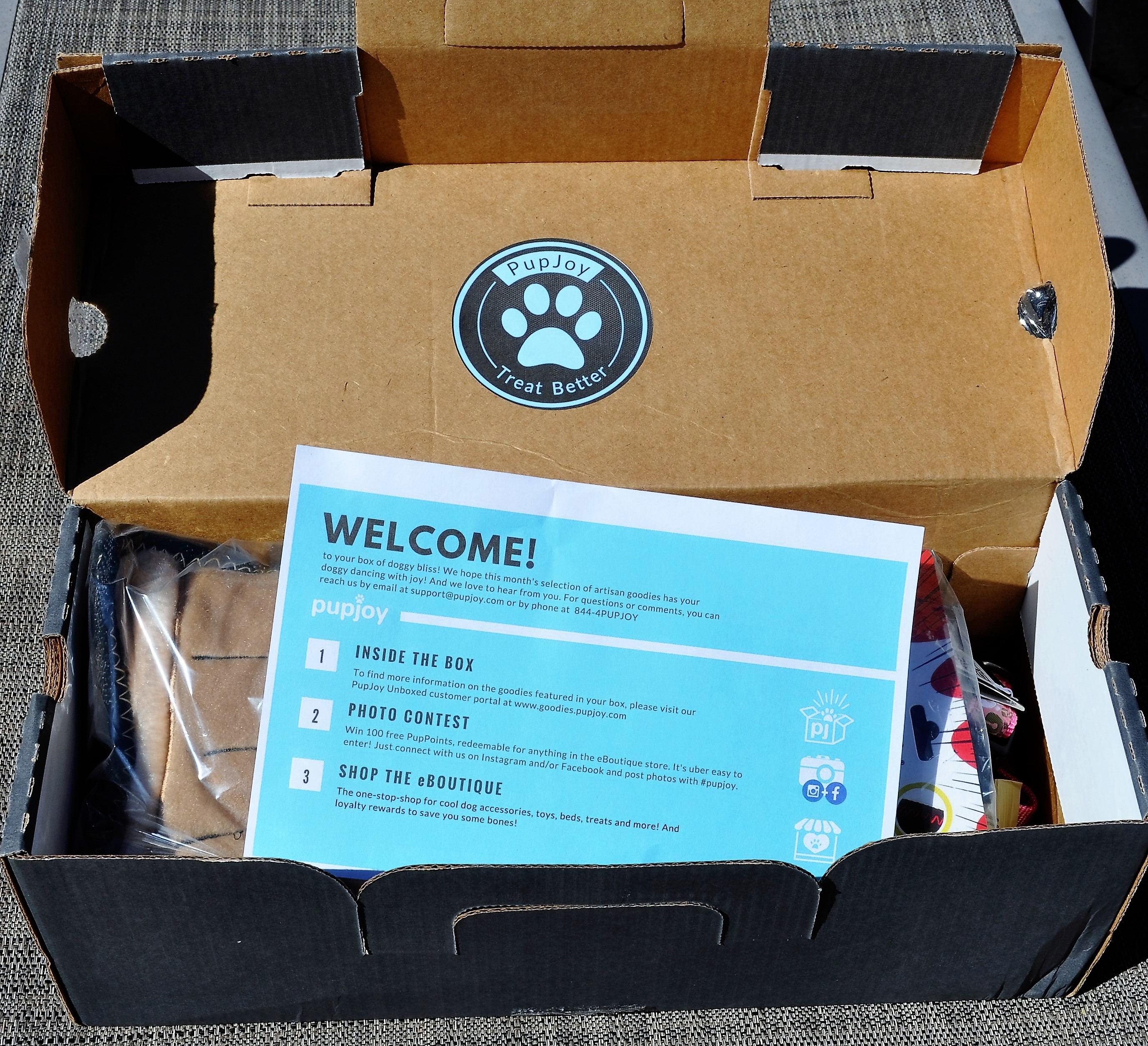 PupJoy April 2016 Open Box