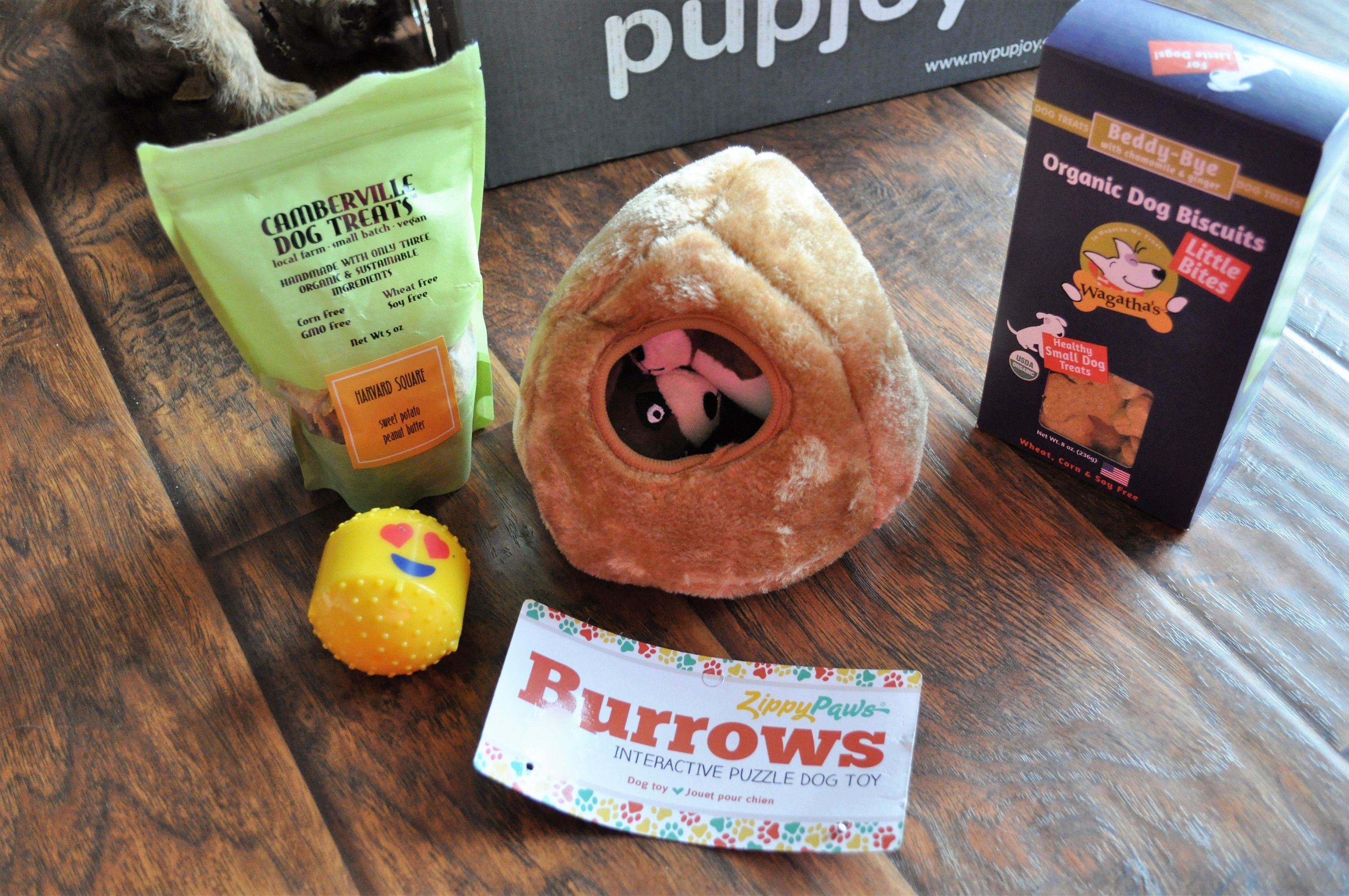PupJoy May 2016 Contents