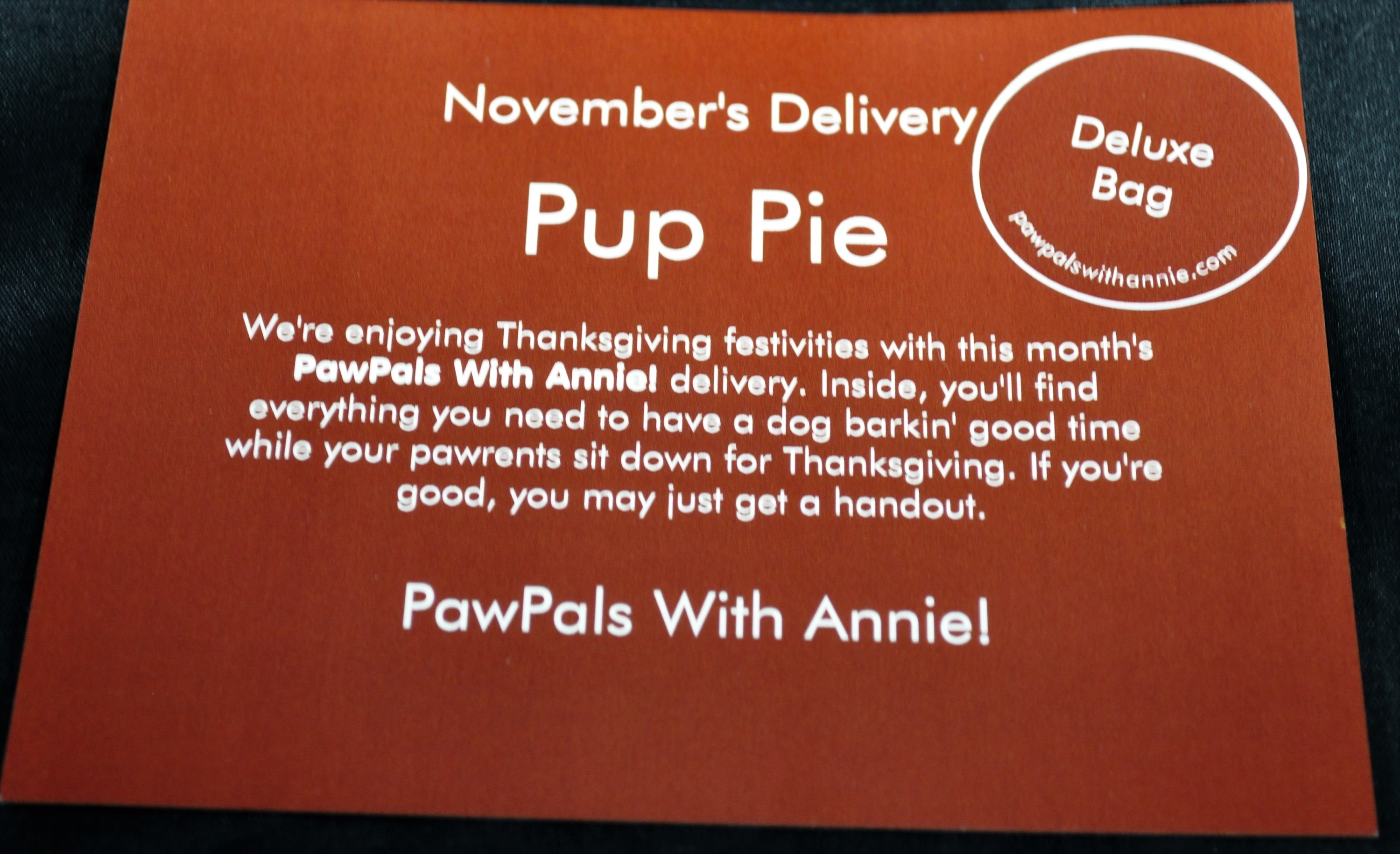 paw-pals-with-annie-november-2016-insert-1